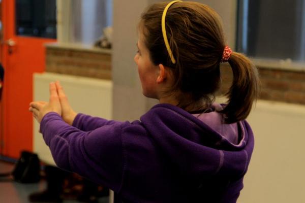 Workshop Stepping Dendermonde